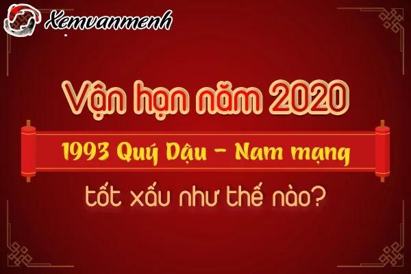 1993-van-han-tuoi-quy-dau-nam-2020-nam-mang