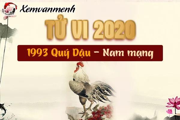 1993-xem-tu-vi-tuoi-quy-dau-nam-2020-nam-mang