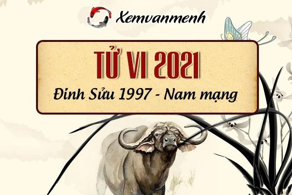 1997-xem-boi-tu-vi-tuoi-dinh-suu-nam-mang