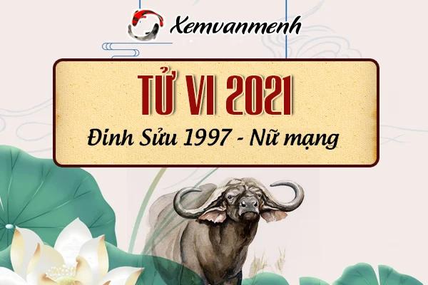 1997-xem-boi-tu-vi-tuoi-dinh-suu-nu-mang